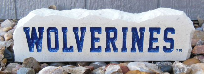 11in wolverines long desk stone