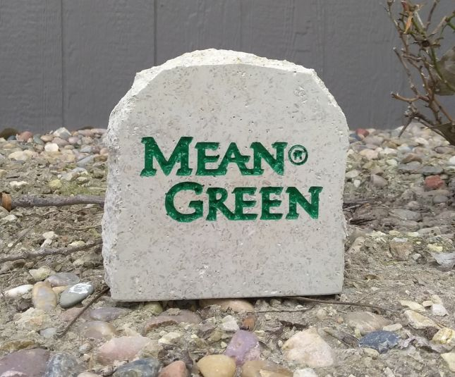 university of north texas mean green desk stone