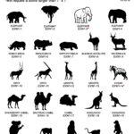 EXW-exotic wildlife pg1
